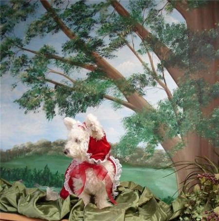 Esta soy yo con mi disfraz de Caperucita Roja