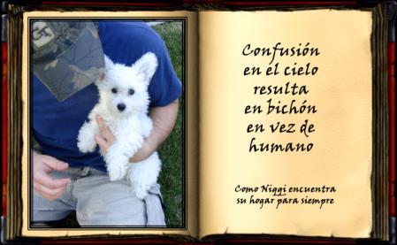 Este es libro que escribe Niqqi y cuenta la historia de su vida.
