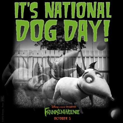 Frankenweenie les desea a todos un feliz día nacional del perro, y yo también.